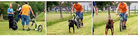 Kickbike-Rennen