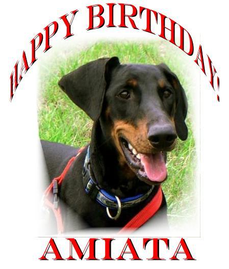 Amiata wird vier