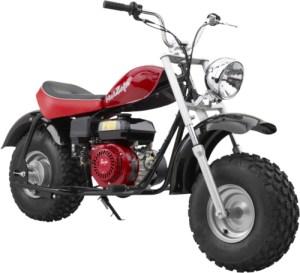 Baja Motorsports Go Kart and Minbike Manuals