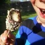 Bananes-glacees-au-chocolat-Paleo