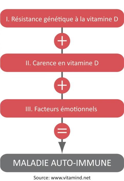 Sclérose en plaques, vitamine D et maladie auto immune