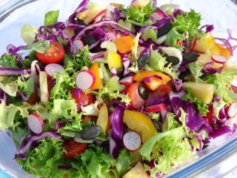 Salade Paléo folle et croquante 1