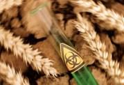 psoriasis et blé moderne toxique gluten