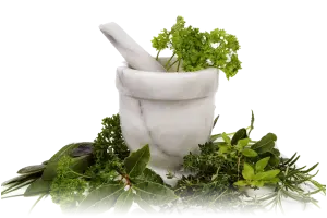 Herbes aromatiques Paléo