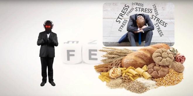 peur et consommation de sucre & de gras