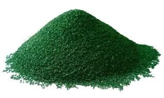 spiruline : source de protéines végétales