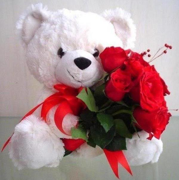 top 25 cute awesome lovely romantic happy teddy day 2014 sms quotes