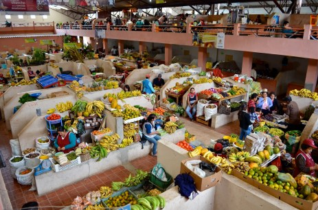 Co-operatives and Rural Markets