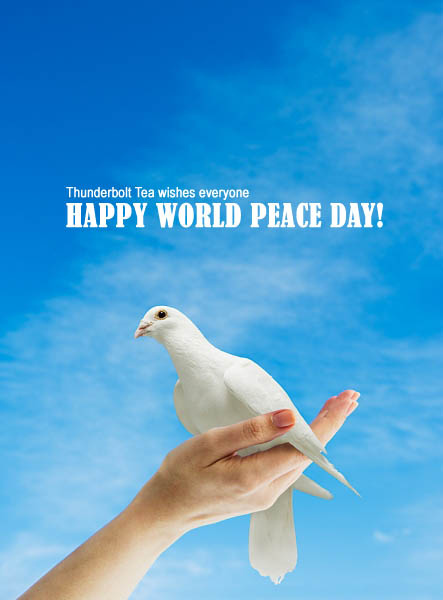 happy world peace day hd images photos greetings world peace day 1 27