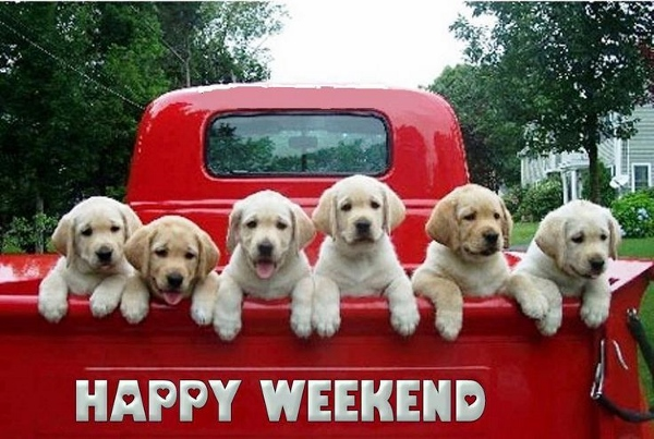 25 awesome happy weekend pictures photos images for for Buon weekend immagini simpatiche