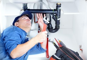 A Handful of Things You Didn't Know About Plumbers
