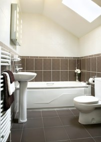 Factors to Consider Before a New Toilet Installation