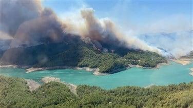 اندلاع حريق غابات بالقرب من منتجع سياحي في تركيا