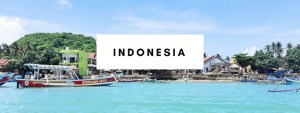 what to do in indonesia