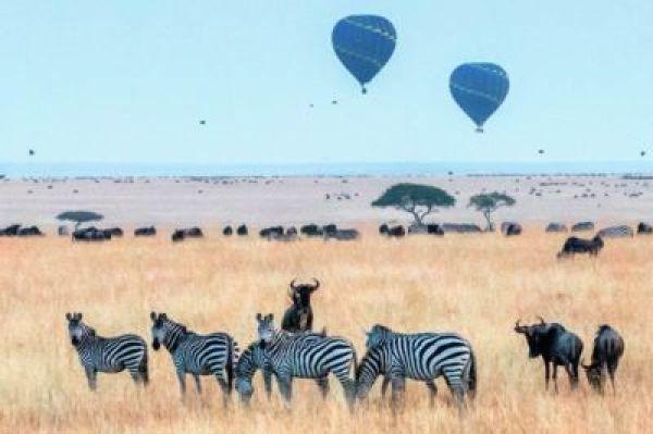 Masai-Mara-Kenya-Africa