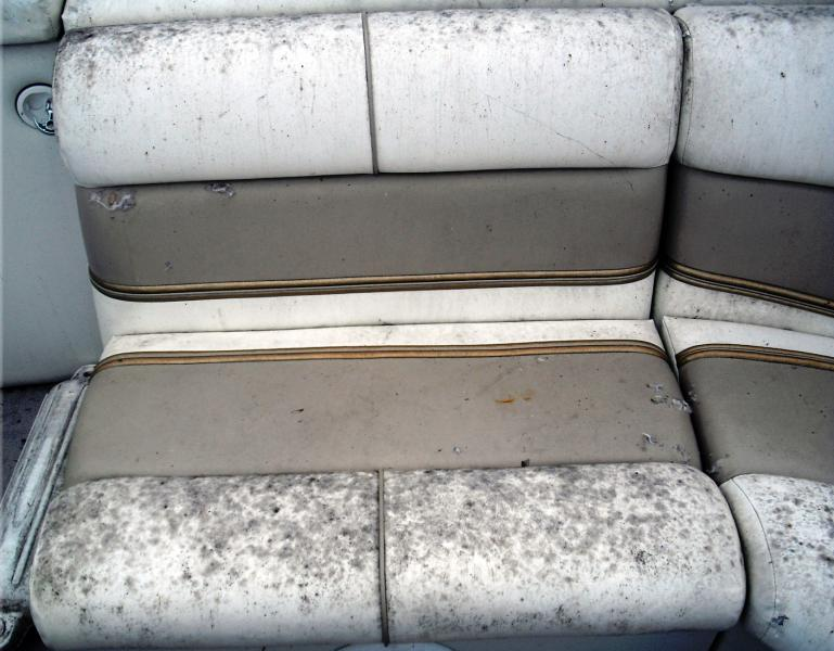 clean-mildew-boat-seats.jpg