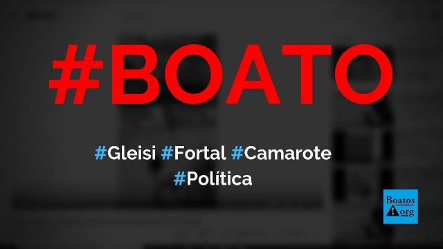 Gleisi Hoffmann vai ao camarote do PT no Fortal e é hostilizada por foliões, diz boato (Foto: Reprodução/Facebook)