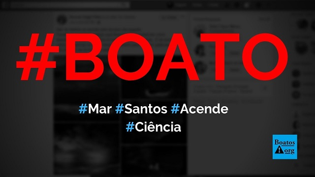 Mar de Santos se acende pelo 3º dia em 2019 por causa de bioluminescência, diz boato (Foto: Reprodução/Facebook)