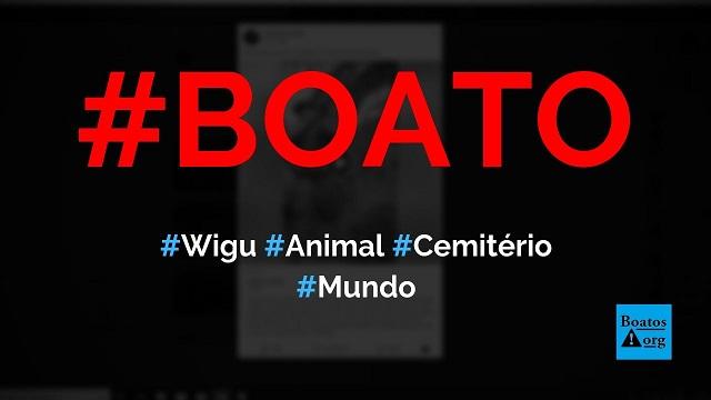 Wigu é um animal árabe que vive em cemitérios e grita como um humano, diz boato (Foto: Reprodução/Facebook)
