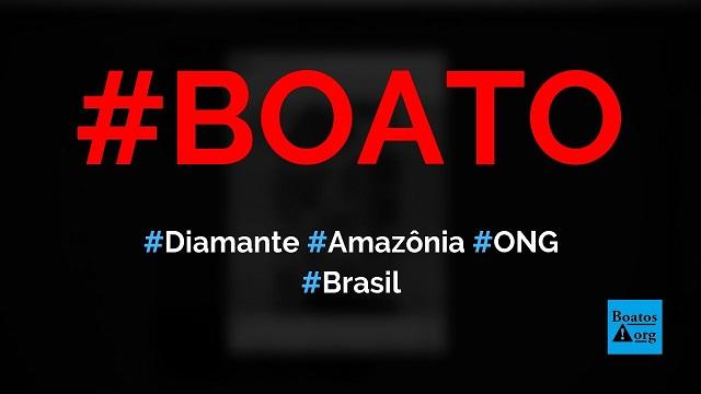 Diamante de duas toneladas e meia foi encontrado em uma ONG na Amazônia, diz boato (Foto: Reprodução/Facebook)