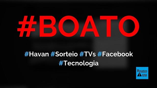 Havan está sorteando TV de 50 polegadas para quem acertar número premiado, diz boato (Foto: Reprodução/Facebook)
