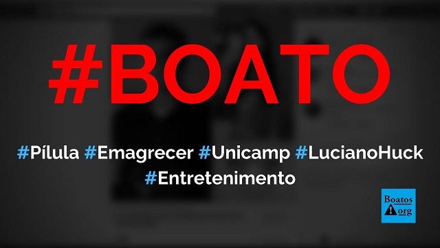 Pílula para emagrecer da Unicamp ganha investimento de Luciano Huck, diz boato (Foto: Reprodução/Facebook)