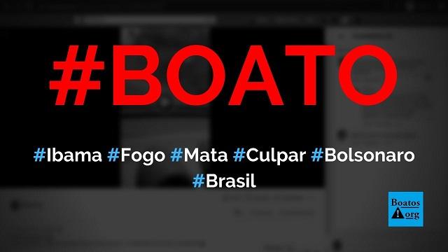 Ibama coloca fogo na mata para culpar o governo Bolsonaro, mostra vídeo, diz boato (Foto: Reprodução/Facebook)