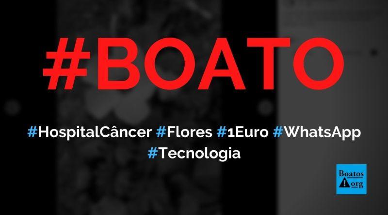 Hospital do Câncer vai ganhar 1 euro por 10 pessoas que repassarem foto de flores, diz boato (Foto: Reprodução/Facebook)