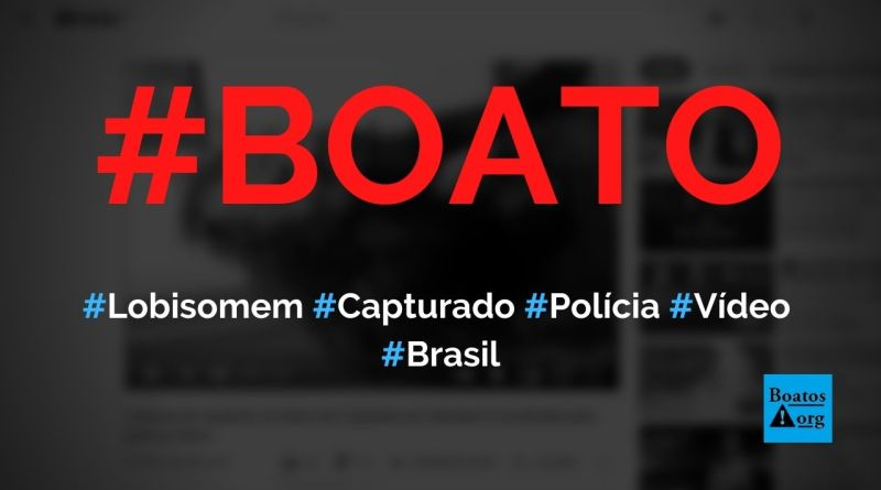 Lobisomem foi capturado pela polícia em Salvador ou no Rio de Janeiro, mostra vídeo, diz boato (Foto: Reprodução/YouTube)