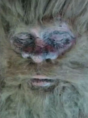 The alleged corpse of Bigfoot taken by career hoaxer, Rick Dyer, circa 2012.