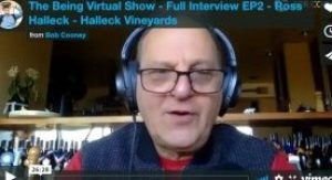 The Being Virtual Show with Ross Halleck