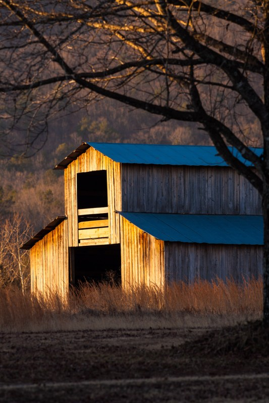 10055. Barn at sunrise, Heber Springs, ArkansasCanon 5D Mk II, 400mm, 1/160 sec, f/8