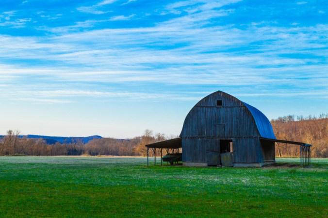 10080. Dawn breaks over the farm, Marshall, Arkansas
