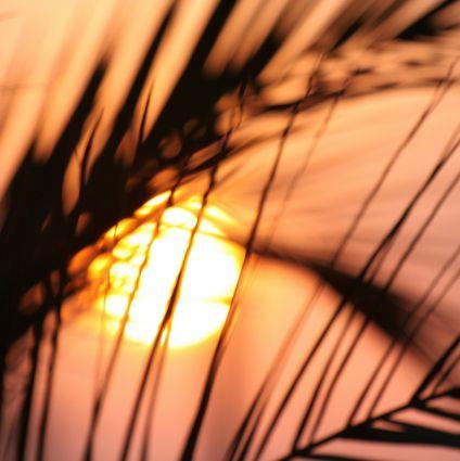Bobilutleie Alicante, Spania- leie bobilAlicante, Spania