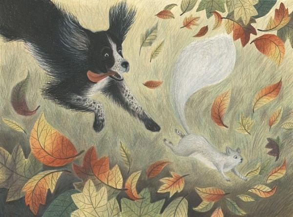 JesseHodgson.Ivy-theSquirrels loww