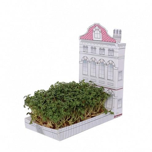 miniature-urban-garden-postable-gift-