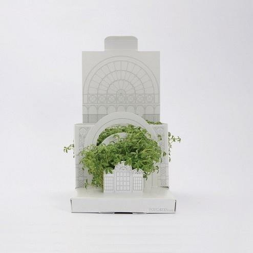 unusual-pop-up-botanical-windowsill-garden