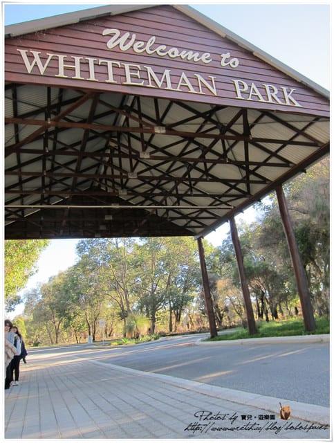 [澳洲]柏斯。Day5-1 袋鼠&無尾熊我來啦!!!卡文森野生動物園Caversham Wildlife Park交通資訊