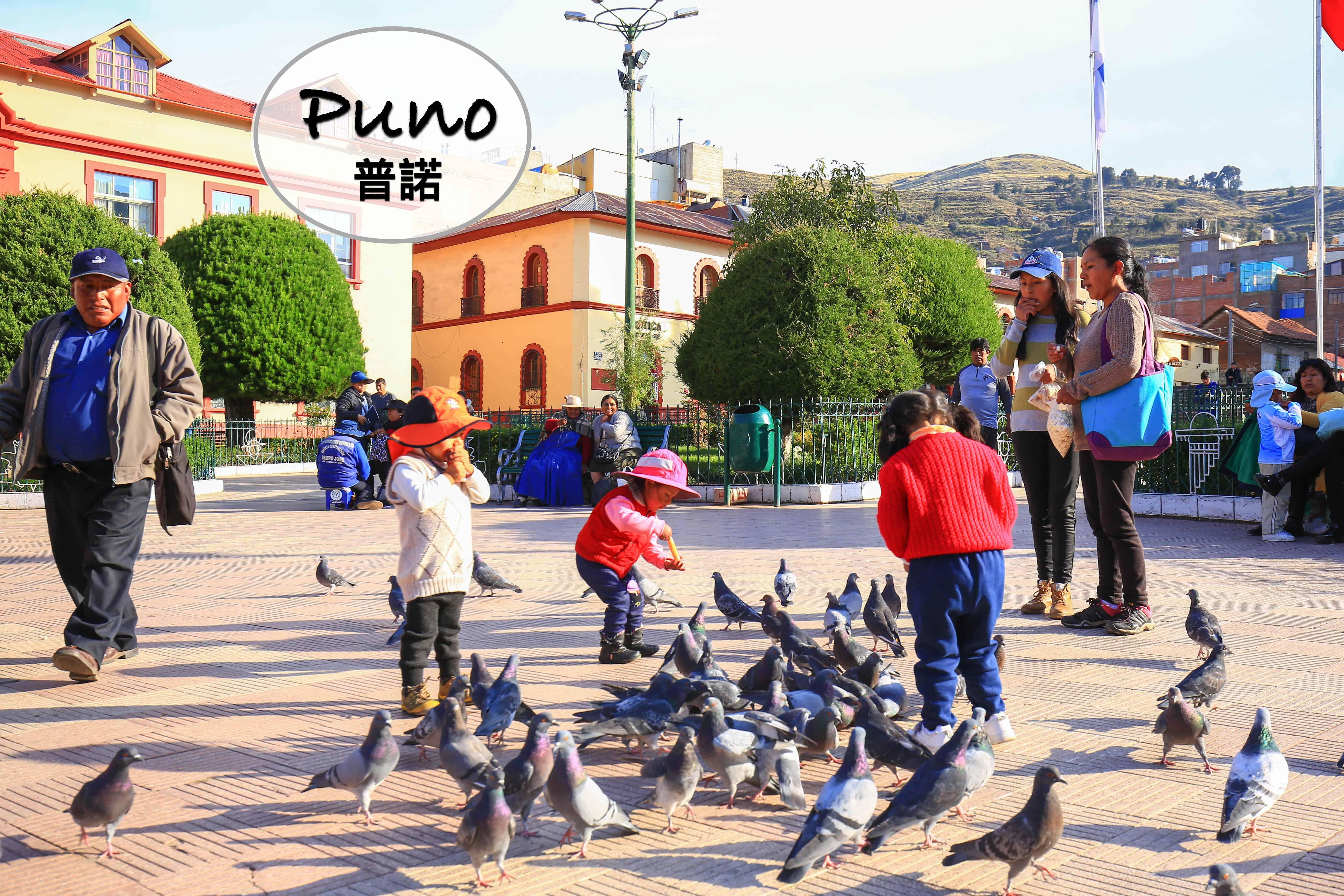 秘魯、Puno DAY6-3 武器廣場的驢子&普諾餐廳Mojsa Restaurant