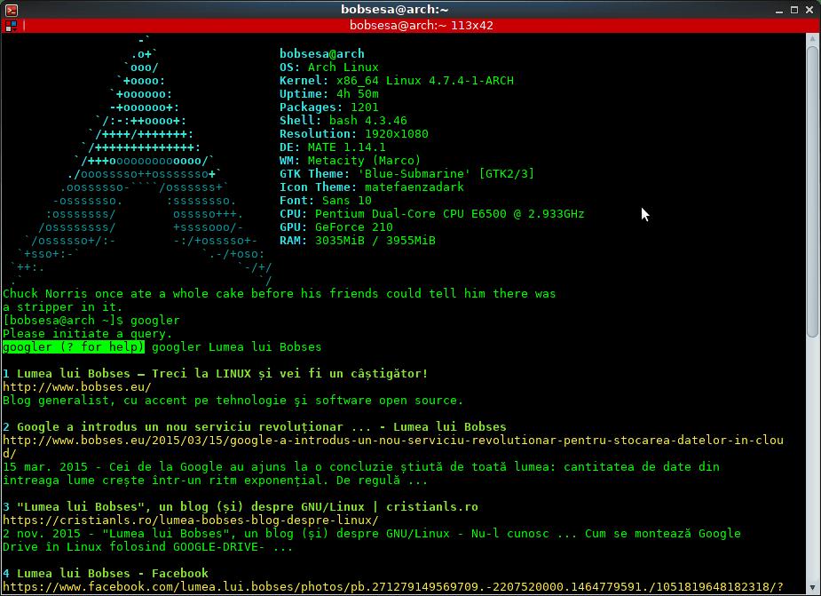 Cum să cauți pe Google în terminalul din Linux   Despre Linux