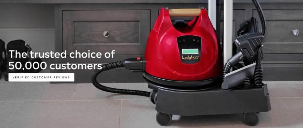 Ladybug Steam Vapor Systems