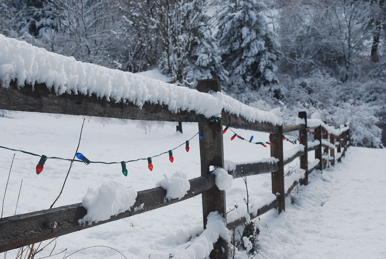 Christmas light in a snow covered fence