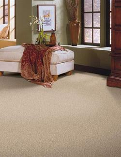 Carpet Stores   Downingtown  PA carpet flooring in downingtown