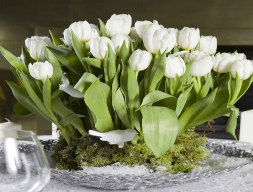 elegir las flores para la boda