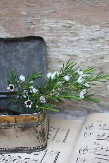 decoración boda con romero www.bodasdecuento.com