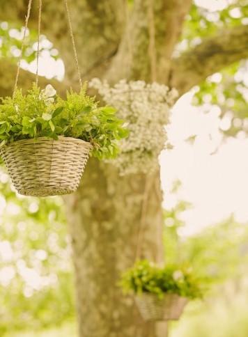 decoración árbol ceremonia www.bodasdecuento.com