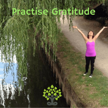 Bodhi Me top 4 tips to happier and healthier life