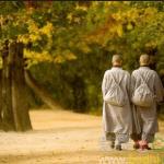人該如何合理地與欲望共度一生?