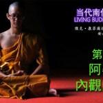 《當代南傳佛教大師》第八章 阿姜念 ACHAAN NAEB