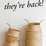 They are back…